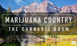 Marijuana Country: The Cannabis Boom (2015)