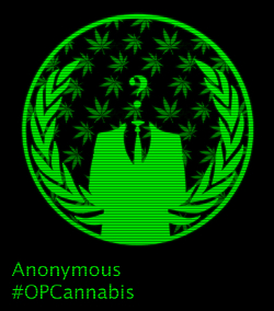 anonymous cannabis activists 420 opcannabis marijuana
