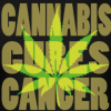 Cannabis effective at killing leukaemia cells, research confirms