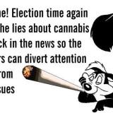 Skunk cannabis strain