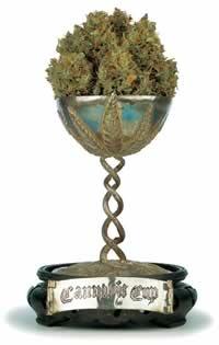 high times cannabis cup usa colorado
