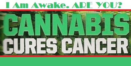 cannabis kills cancer cells