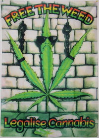 drug war flat earch cannabis dissident