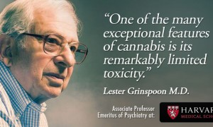 Cannabis causes schizophrenia! Or does it?