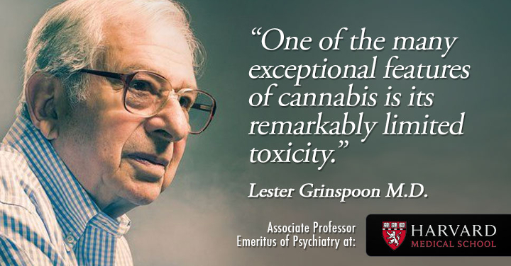 Dr. Lester Grinspoon quote
