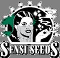 sensi seeds outdoor seeds