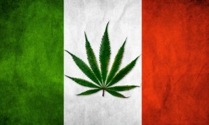 250 Italian Lawmakers Support Cannabis Decriminalization Proposal