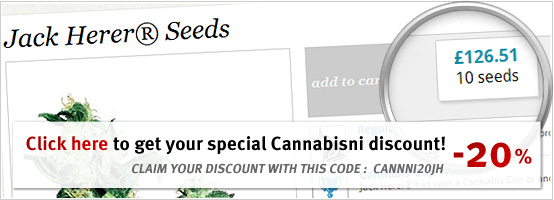jack herer marijuana seeds discount