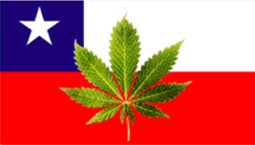 Chile Cannabis