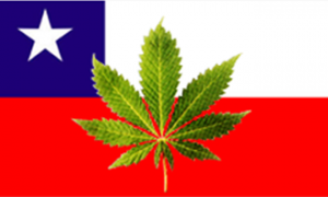 Chile Health Committee Passes Bill to Legalize Cannabis