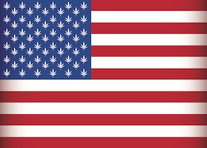 usa cannabis legalisation state federal