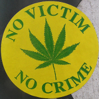 no victim no crime cannabis badge