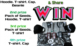 Win Sensi Seeds Latest Street Wear & Seeds