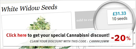 white widow indica white label seeds discount